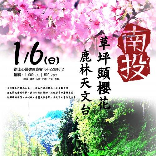 <b>中部/1/6草坪嶺櫻花行...</b>